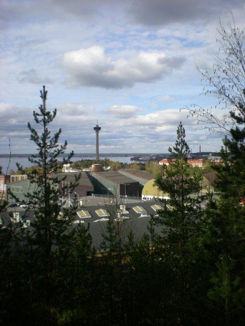 Вид на город с ледниковой гряды Пююникинхарью