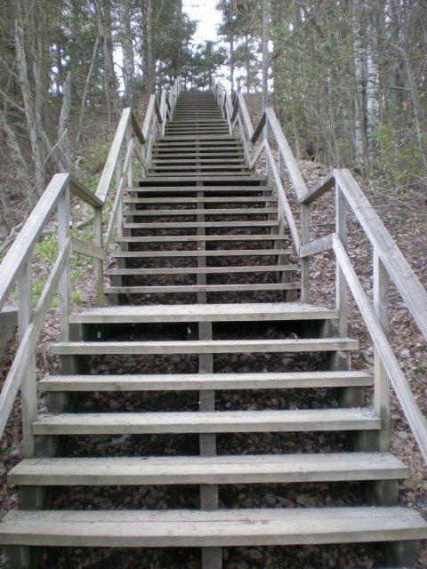 """""""Лестница в небо"""". Таких очень много в Пююникки и Писпале"""
